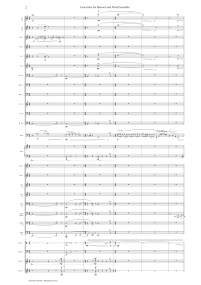 Bassoon ConcertinoZ 7