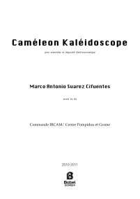 CameleonKaleidoscope_SuarezCifuentes BS z