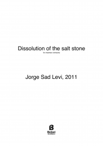 Dissolution of the salt stone