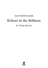 Echoes in the Stillness image