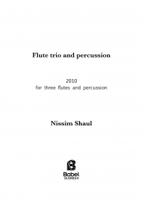 Flute trio with percussion image