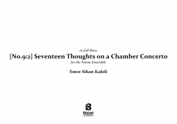 Seventeen Thoughts on a Chamber Concerto image
