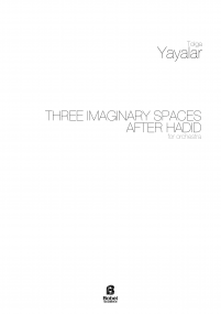 Three Imaginary Spaces after hadid A3 z