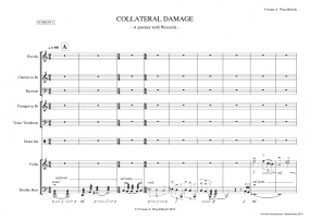 collateral damage A4 z 5