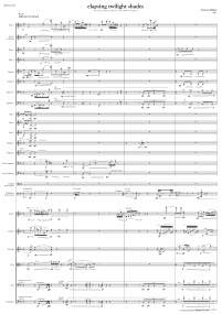 elapsing twilight shades FULL SCORE 2014 Christian Baldini A3 z 9