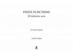 Finite Functions of infinitive sets