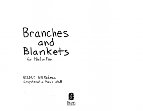 Branches and Blankets image