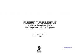 Fluxus Turbulentus