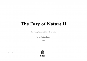 The Fury of Nature II for string quartet
