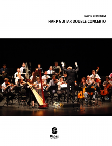 Harp Guitar Double Concerto image
