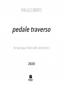 pedale traverso image